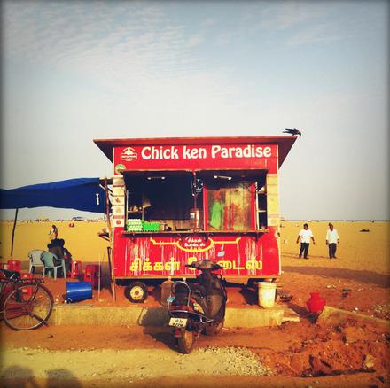 Chick ken Paradise